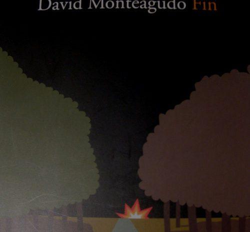 Fin / David Monteagudo