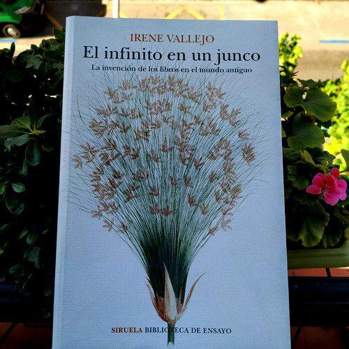 """Portada de """"El infinito en un junco. La invención de los libros en el mundo antiguo"""" de Irene Vallejo. Editorial Siruela. Colección Biblioteca de ensayo."""