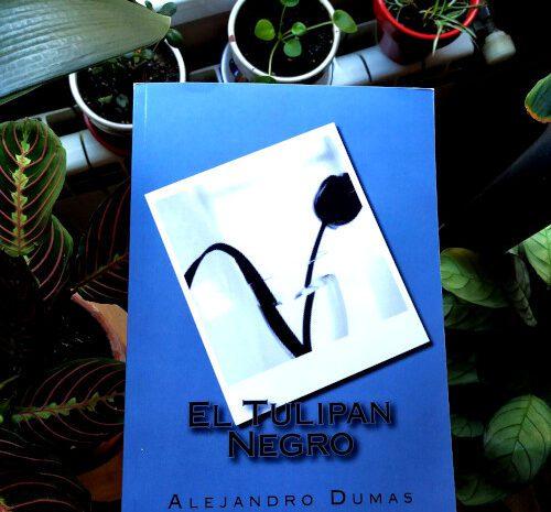 El tulipán negro / Alejandro Dumas